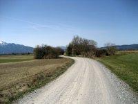 Loisach-Kochelsee-Moor: Bild #30