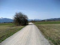Loisach-Kochelsee-Moor: Bild #31