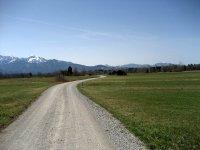 Loisach-Kochelsee-Moor: Bild #33