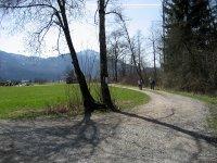 Loisach-Kochelsee-Moor: Bild #37