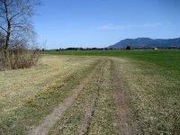 Loisach-Kochelsee-Moor: Bild #53