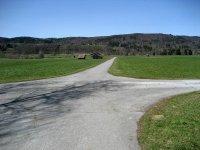 Loisach-Kochelsee-Moor: Bild #56