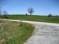Loisach-Kochelsee-Moor: Bild #66