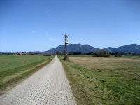Loisach-Kochelsee-Moor: Bild #68