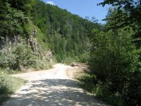Gufferthütte: Bild #37