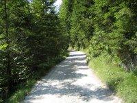 Gufferthütte: Bild #53