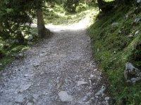 Lamsenjochhütte: Bild #53