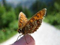 Die besten Mountainbike-Reviere: Biken im wilden Karwendel: Bild #5