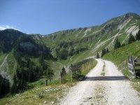 Die besten Mountainbike-Reviere: Biken am Tiroler Achensee: Bild #2