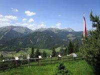 Die besten Mountainbike-Reviere: Biken am Tiroler Achensee: Bild #11