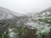 Erlebnisbericht Transalp: Arosa - Savognin (Tag 4): Bild #5