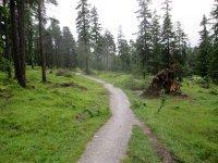 Erlebnisbericht Transalp: Arosa - Savognin (Tag 4): Bild #9