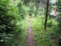 Erlebnisbericht Transalp: Arosa - Savognin (Tag 4): Bild #11