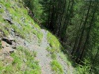 Erlebnisbericht Transalp: Savognin - Chiavenna (Tag 5): Bild #1