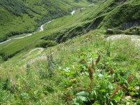 Erlebnisbericht Transalp: Savognin - Chiavenna (Tag 5): Bild #12