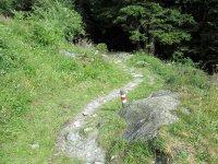 Erlebnisbericht Transalp: Savognin - Chiavenna (Tag 5): Bild #14