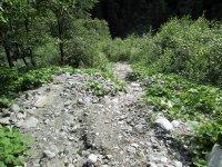 Erlebnisbericht Transalp: Savognin - Chiavenna (Tag 5): Bild #16