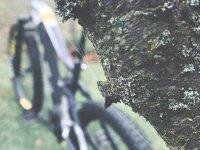 E-Mountainbikes: Wenn die Leidenschaft in den Winterschlaf fällt: Bild #2