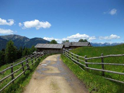 Schutzhütte Kreuzwiesenalm: Bild #5
