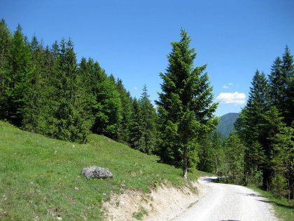 Schronbachtal